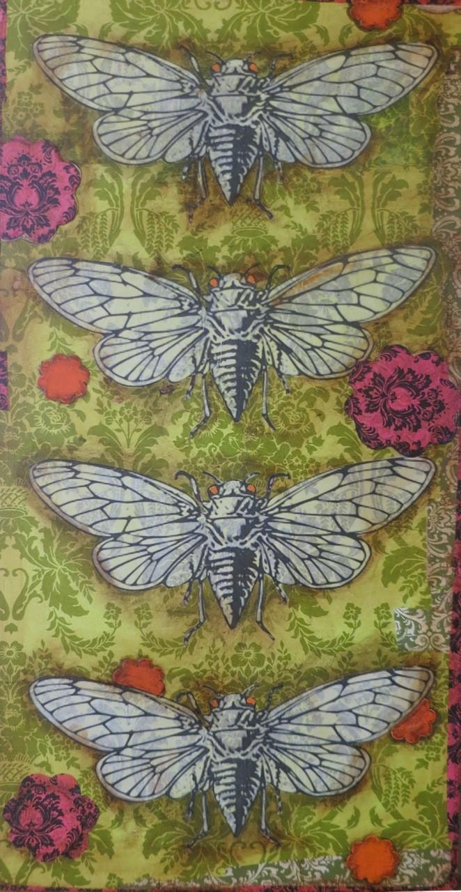 Moth Magic